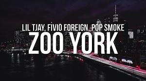 Lil Tjay - Zoo York