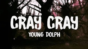 Young Dolph - Cray Cray