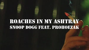 Snoop Dogg - Roaches In My Ashtray