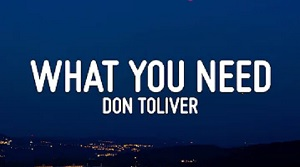 Don Toliver - What You Need