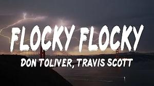 Don Toliver - Flocky Flocky