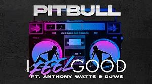 Pitbull - I Feel Good